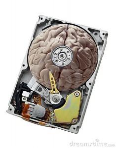 brain-harddrive